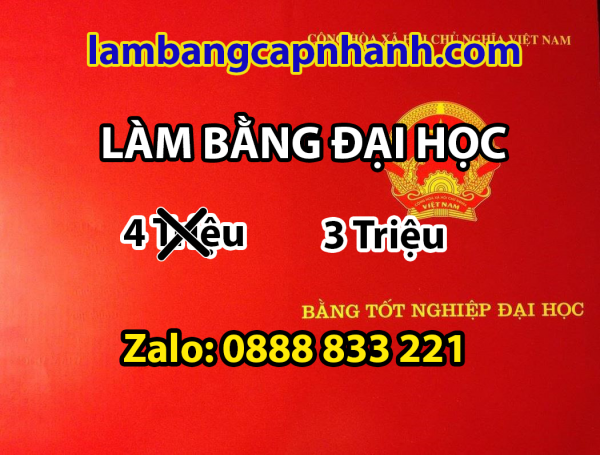 lam-bang-dai-hoc-co-ho-so-goc-ha-noi
